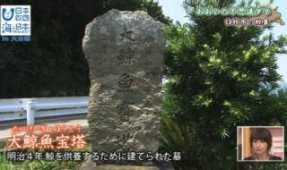 臼杵市のくじら墓