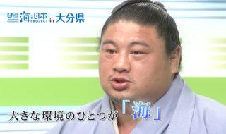 嘉風関CM
