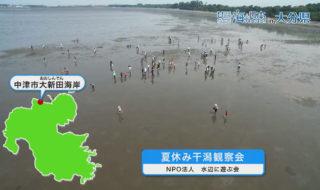 中津干潟観察会