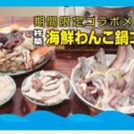 海鮮わんこ鍋コース
