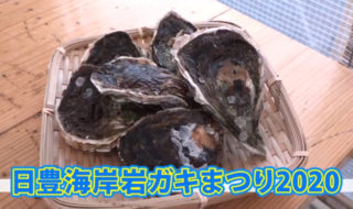 日豊海岸岩ガキ祭り