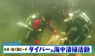 ダイバーの海中清掃